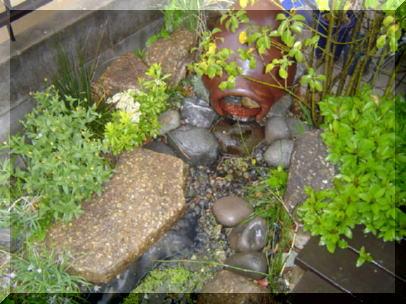 庭先のビオトープ。ポンプを使って小川を再現しています。
